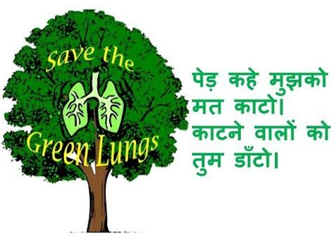 Report writing on environment day